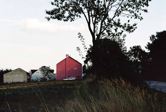 07-05_polen_pink-9